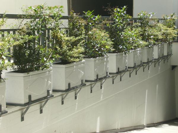 Vasi in cemento manufatti in cemento fortunato caltanissetta - Vasi per esterno in cemento ...