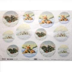 Carta riso volpi orsi e procioni to.do 33x48