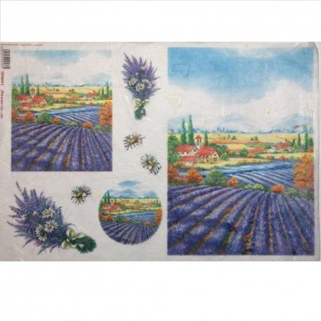 Carta riso campo di lavanda stamperia 33x48