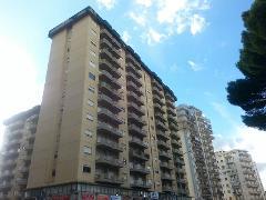 Più di 5 locali in Affitto a Palermo