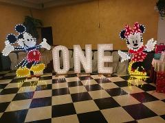 LUCI PER COMPLEANNO Wedding Lights Luci Tema Disney