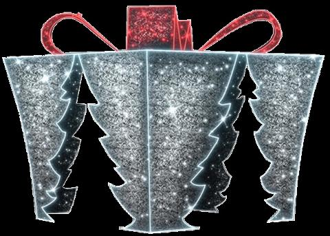 Pacco regalo 4 ingressi Metal Strutture Luminaria Natalizia