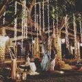 GRAPPOLI PENDENTI ALBERO LUCI PENDENTI ALBERO Wedding Lights Luci Pendenti Led