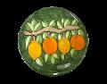 Piatto  Nino Parrucca Limoni e Arance su fondo verde