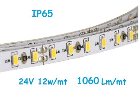 Strip LED 24V 2835 120 Led/mt 12w/mt Luce Natura IP65 ELCART