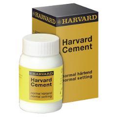 HARVARD CEMENT A PRESA NORMALE - Polvere clinica n. 3 (giallo biancastro) - 100 g 410429912   HARVAR HARVARD Polvere clinica n. 3 (giallo biancastro)