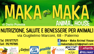Maka Maka  Animal House di Dario Pumilia