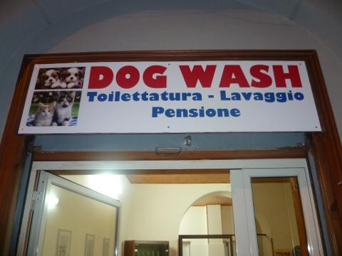 Dog Wash Lavaggio Toelettatura