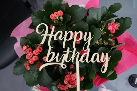 """Top Cake scritta """"Happy Birthday"""" in Plexiglas Regplex Decorazione per Torta"""