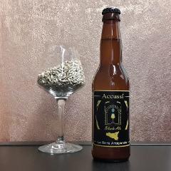 Blonde Ale Accussí Accussí Blonde Ale