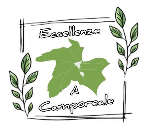 Associazione Eccellenze a Camporeale