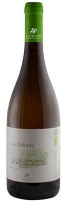 Vino Bianco / Guardalomo Grillo /  IGP terre siciliane BIO / Candido Vini