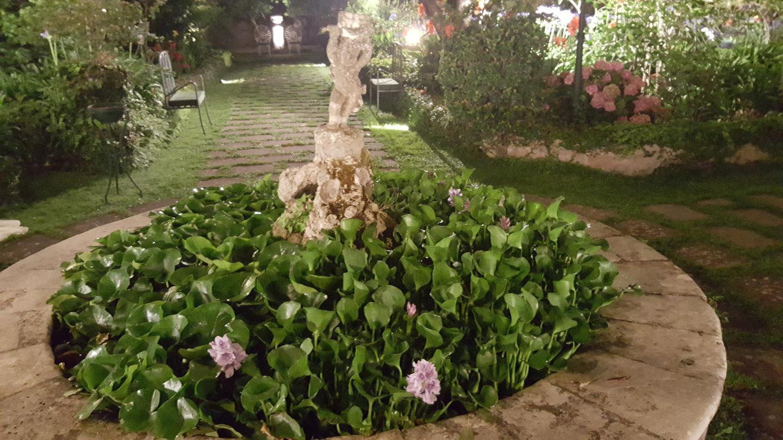 Il giardino del gelso foto gallery milazzo messina - Giardino delle ninfee ...