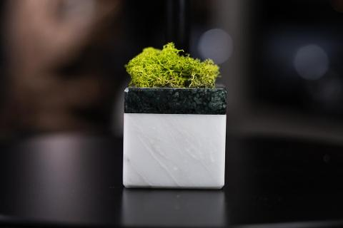 "CUBO DI MARMO E MOSS- CISAM DESIGN ""HOPE NATURE"""