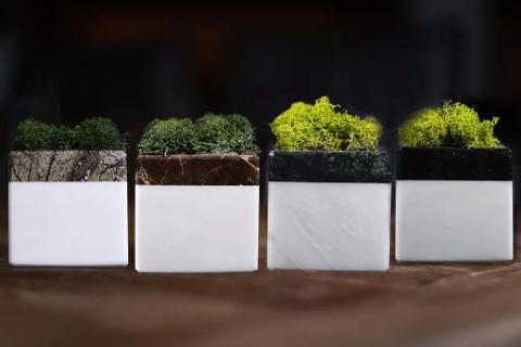 Collezione White Cubi di Marmo E-Moss Cisam Design 4 Pz