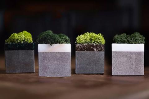 Collezione Stone Cubi di Marmo E-Moss Cisam Design 4 Pz