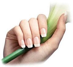 MASTER Manicure  SPA