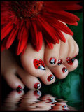 MASTER in Pedicure SPA