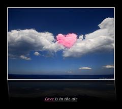 """LOVE IS IN THE AIR """"COSATINTA"""", Animazione Nozze."""