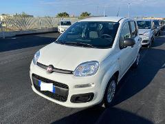 Fiat New Panda 1.2 69 CV EASY Benzina
