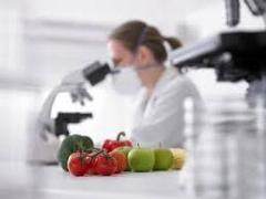 Analisi alimentari HACCP