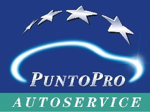 Officina servizio PuntoPro e blu officina