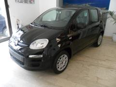 Fiat Panda 1.2 EASY 69CV KM0 Benzina