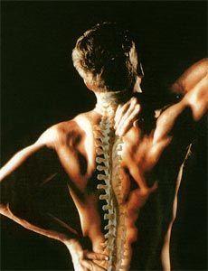 Mal di schiena - riabilitazione