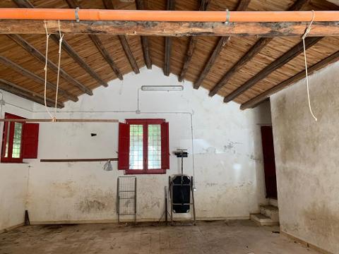 Magazzino / Deposito in Affitto a Palermo