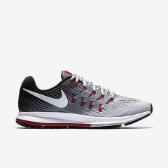 Air Zoom Pegasus  NIKE 33