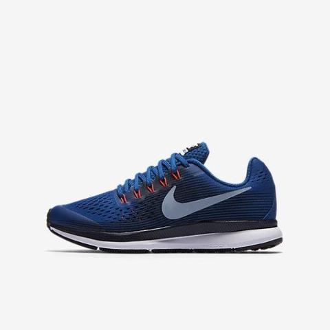 Air Zoom Pegasus 34 GS NIKE