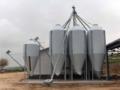 Realizzazione di impianti di stoccaggio cereali
