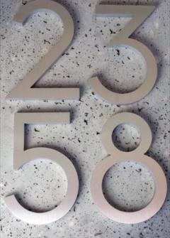 Numero in acciaio inossidabile Aisi 304 satinato/lucido
