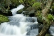 H2O palermo e provincia h2o