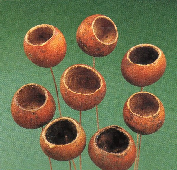 Mini Bell Cups  - Kurchi Ftuit gr. 250