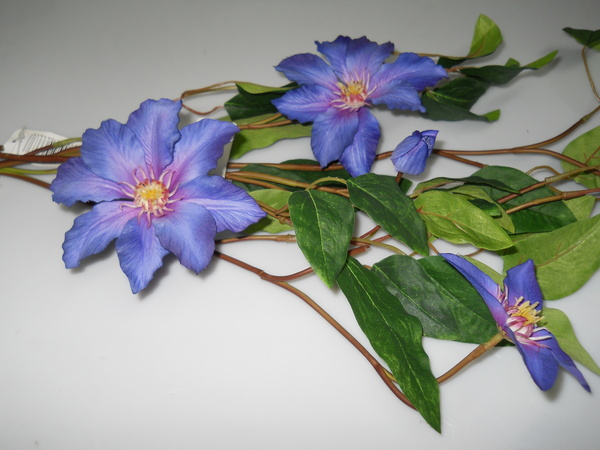 Clematis spray H 78 Ross