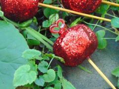Frutta del peccato con stecca in 4 modelli