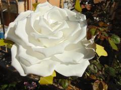 Rosa Aperta cm. 25 in polifoam con stelo - Sconti per Fioristi e Aziende