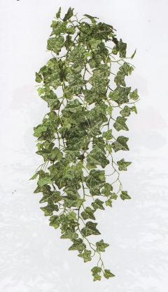 Edera Inglese Cadente x 4 Verde in poliestere cm. 120