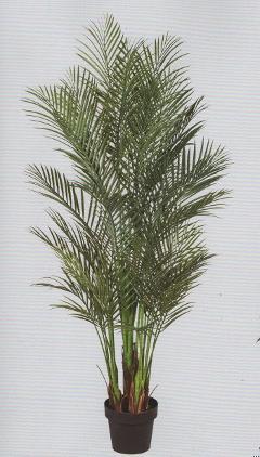Areca Palm x 6 artificiale alta cm. 160  con 1076 foglie
