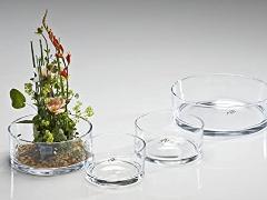 Ciotola in vetro Tonda dm. 12 - 15 - 19 - 25 - Sconti per Fioristi e Aziende