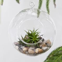 Sfera in vetro con foro dm. 15 H 17 per fioristi, wedding e Arredatori