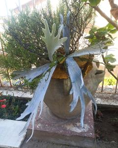 Platicerium Bifurcatum - Corna d'Alce Artificiale H 65 per fioristi e wedding