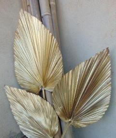 Palma Extra x 3 Stabilizzata  Oro & Argento  per fioristi, wedding e Arredatori