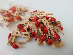 Mollette legno coccinella  in due misure - Sconti per Fioristi e Aziende