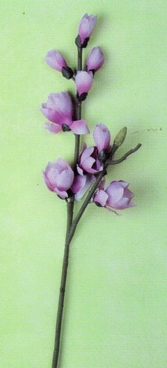 Magnolia Nipponika  H 84 in poliestere