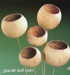 Bell Cups Naturale steccati x 5