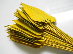 Foglie Naturali x 50 Arrows tagliate a cuore - Sconti per Fioristi e Aziende