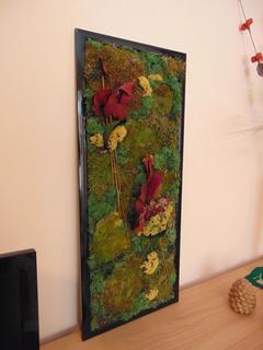 Quadro Vegetale Preservato Nido di Rondine cm. 80 x 34 - Sconti per Fioristi e Aziende