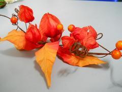 Decoro    Fisalis Orange